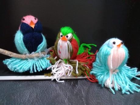 ציפורים מצמר